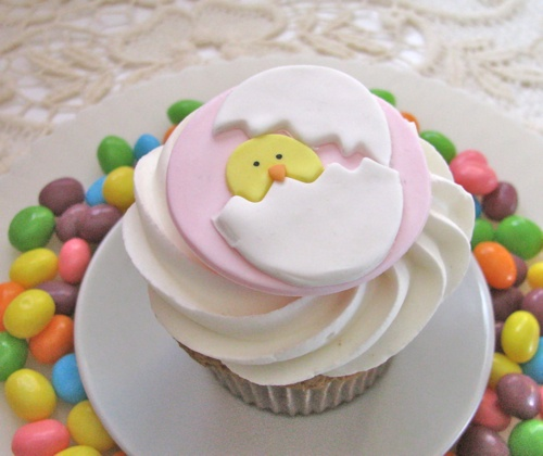 Oster-Cupcakes-4
