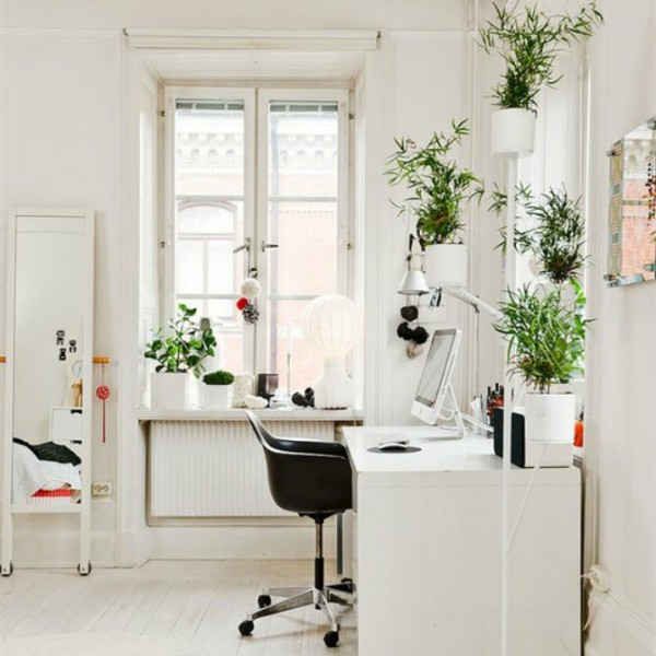 Elegante home-Office-Stil-dekorationsartikel_19