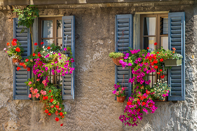 Old Window Frame Ideas For Outside Flower Boxes